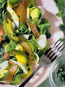 chicory-salad