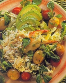 avocado-crab-and-cilantro-salad